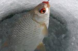 В рыбной отрасли - ЧС